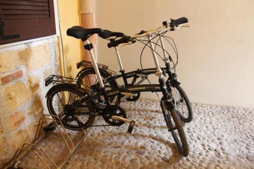Attività di ciclismo presso il bed & breakfast o nelle vicinanze