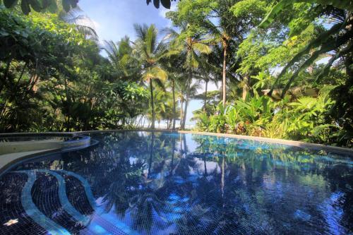 The swimming pool at or near Hotel Tropico Latino