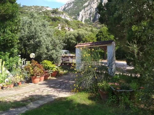 A garden outside B&B S'Archiotta