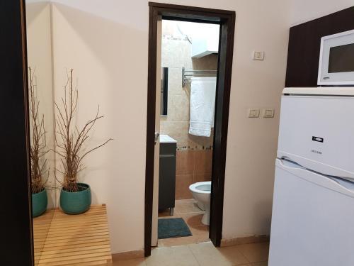 Ванная комната в Rothschild Apartments