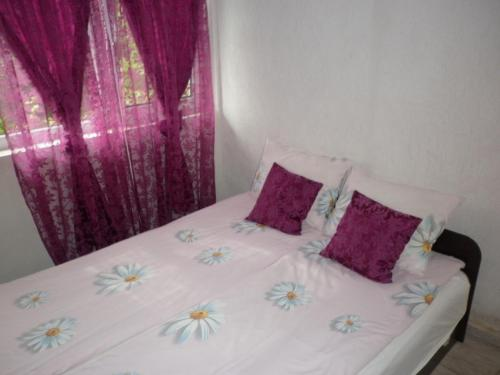 Легло или легла в стая в Pri Didi