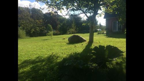 A garden outside Pension Runde Wiese