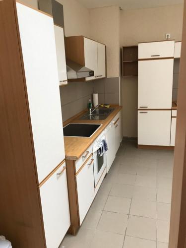 A kitchen or kitchenette at Schöntal Apartment
