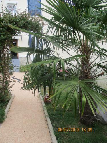 A garden outside Côté Marne