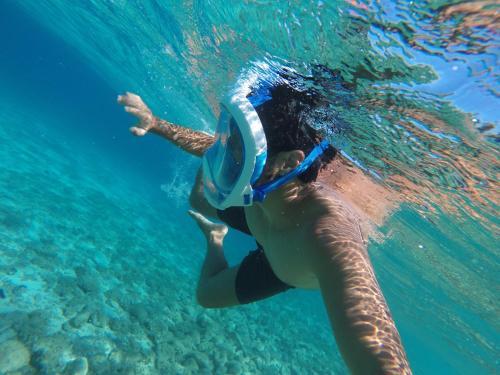 Hacer snorkel o bucear en el albergue o alrededores
