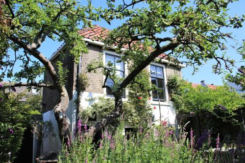 Apple Tree Cottage - charming studio in our city garden -