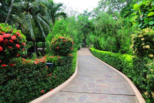A garden outside Villa del Sueño