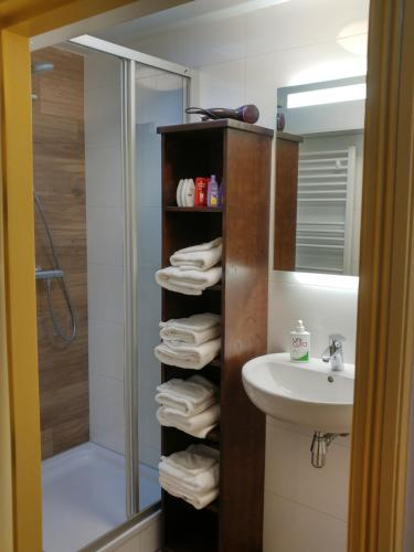 A bathroom at De Vliegende Vos het geboortehuis van Johannes Vermeer
