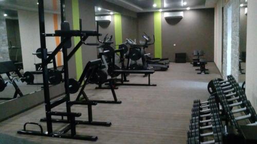 Фитнес-центр и/или тренажеры в Hotel Zolotoy Drakon