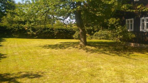 Zahrada ubytování Chalupa Severak