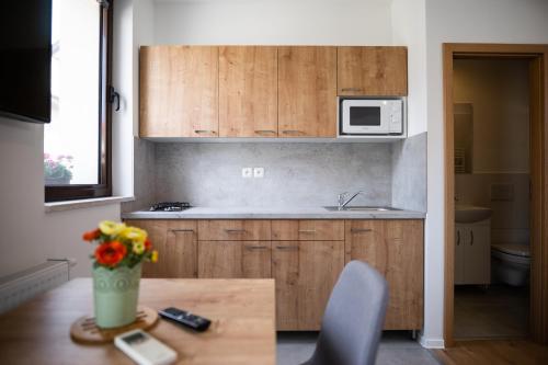 Kuchyňa alebo kuchynka v ubytovaní Ubytovanie Alej Bojnice