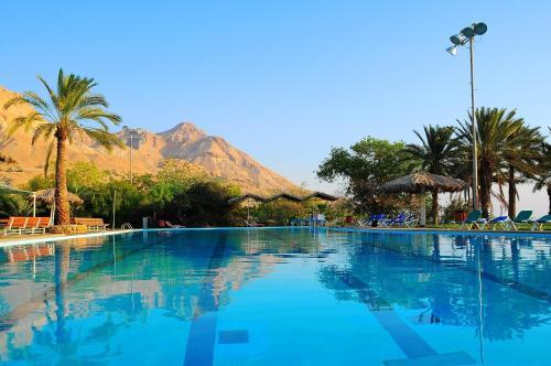 The swimming pool at or close to Ein Gedi Kibbutz Hotel