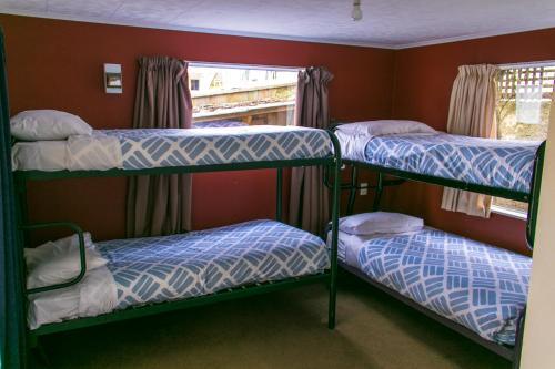 Un ou plusieurs lits superposés dans un hébergement de l'établissement Kiwis Nest Backpackers and Budget Accommodation