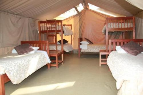 A bed or beds in a room at Wildebeest Eco Camp