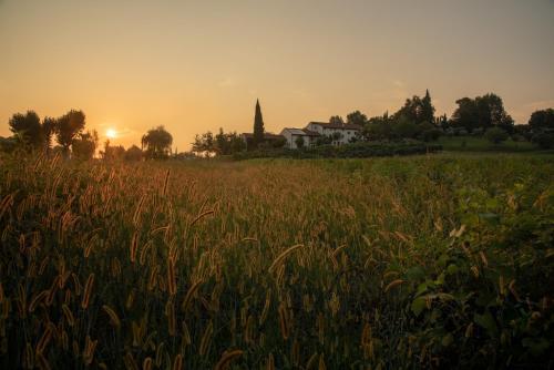 Agriturismo Relais Maddalene101