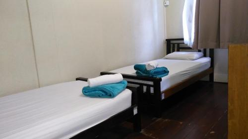 A bed or beds in a room at Borneo Backpackers