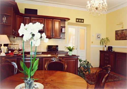 Kuchnia lub aneks kuchenny w obiekcie Ludvig Apartment