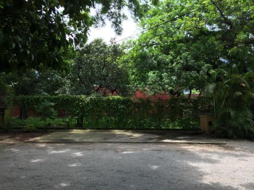 A garden outside Tubohotel
