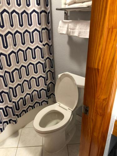 A bathroom at Budget Inn - Laurens