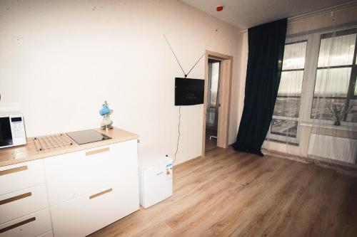 Телевизор и/или развлекательный центр в Apartments Pulkovskoe 14E