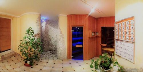 Spa and/or other wellness facilities at Pension Weinberger