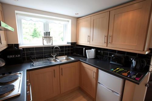A kitchen or kitchenette at Winchfawr Lodge