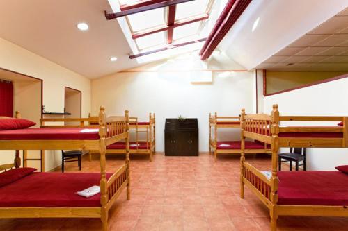 A bunk bed or bunk beds in a room at Albergue Vía Láctea