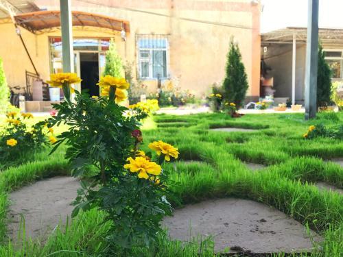 Jardin de l'établissement Apple Hostel Bishkek