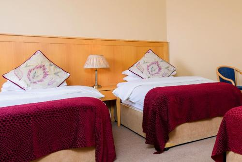 A bed or beds in a room at Dingle Bay Hotel