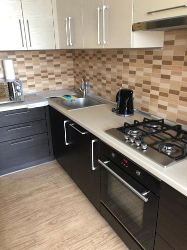 Кухня або міні-кухня у Apartments on Zooparkova Street