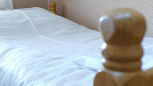 Krevet ili kreveti u jedinici u okviru objekta B&B Vila Bela Ruza