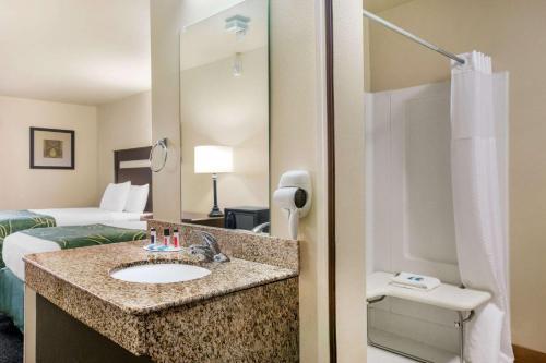 A bathroom at Travelodge by Wyndham Livonia