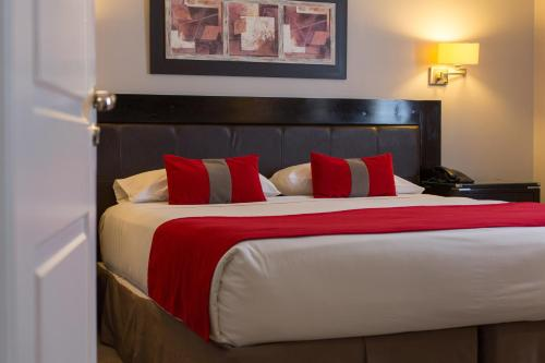 A bed or beds in a room at Alto Andino Hotel