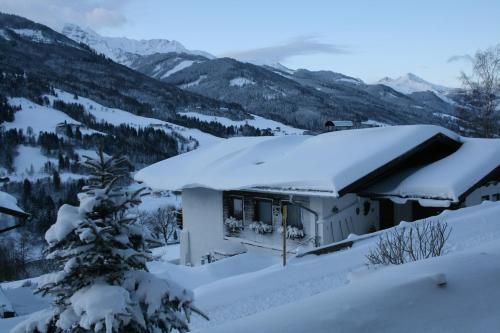 Schernthaner v zimě