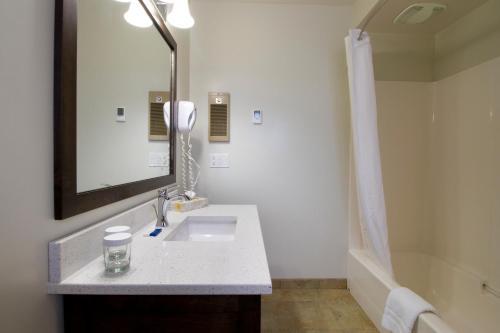 A bathroom at Swiss Chalet Motel