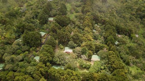 A bird's-eye view of Los Pinos Lodge & Gardens
