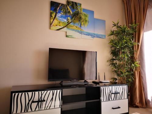 Una televisión o centro de entretenimiento en MuchoSol
