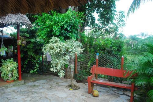 A garden outside Hostal Trujillo