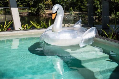 The swimming pool at or near Alkira Award Winning Luxury Beachfront Rainforest Holiday House
