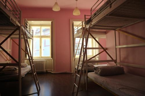 A bunk bed or bunk beds in a room at Wild Elephants Hostel
