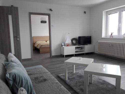 Televízia a/alebo spoločenská miestnosť v ubytovaní Apartman Dominik