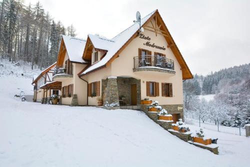 Zlote Modrzewie during the winter