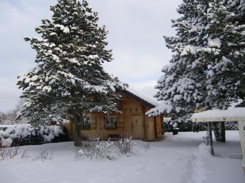 L'établissement Chalet de campagne en hiver