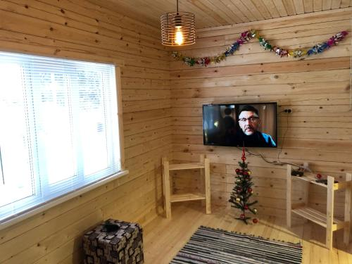 A television and/or entertainment center at Holiday Home