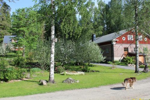 Puutarhaa majoituspaikan Nukula Guestrooms ulkopuolella