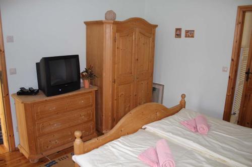 TV/Unterhaltungsangebot in der Unterkunft Ferienhof Alte Schmiede