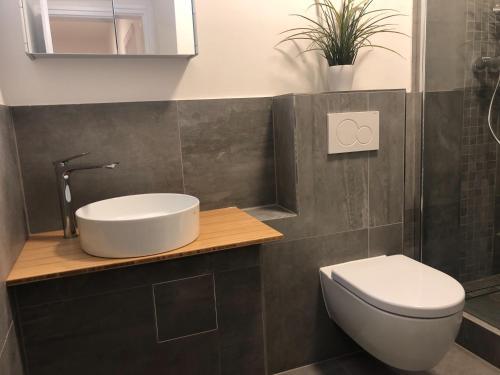A bathroom at Messeapartment an der Altstadtmauer