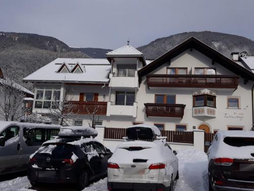 App. Tamanhof im Winter