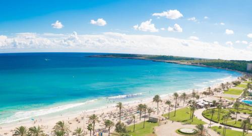 A bird's-eye view of CM Playa del Moro