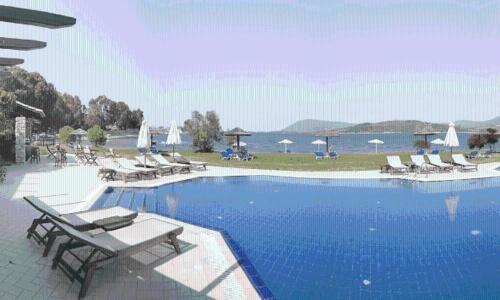 The swimming pool at or near Porto Ligia